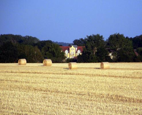 Das Landhotel Löwenbruch - Getreideernte - Hotel im Hintergrund